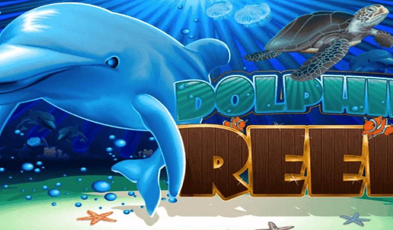 Dolphin Reef Video Slot Casino Bonus