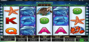 jeu de récif de dauphin