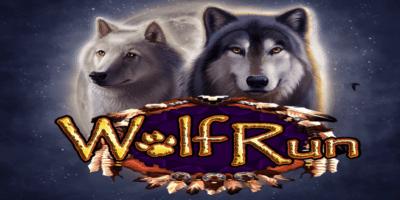 wolf run video slot