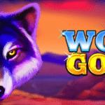 machine à sous vidéo d'or de loup